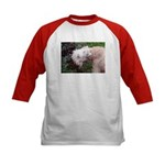 Wheaten Terrier Kids Baseball Jersey