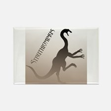 Struthiomimus Rectangle Magnet