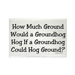 Groundhog Rectangle Magnet (100 pack)