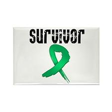 Liver Cancer Survivor Rectangle Magnet