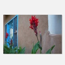 Red Flower on Adobe (Package of 8)