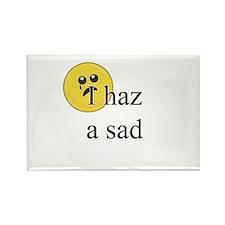 I Haz A Sad Rectangle Magnet