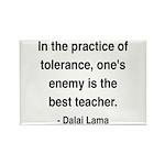 Dalai Lama 13 Rectangle Magnet (100 pack)