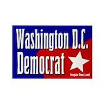 Washington D.C. Democrat Magnet