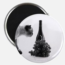 Funny Wine enthusiast Magnet