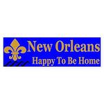 Hurricane Katrina Survivor Bumper Sticker