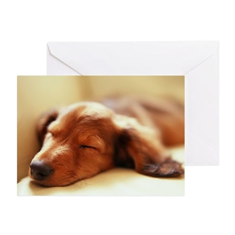 Red Long Hair Greeting Cards (Pk of 20)