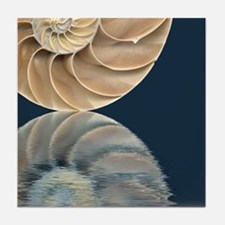 Nautilus Mini Mural Tile 04