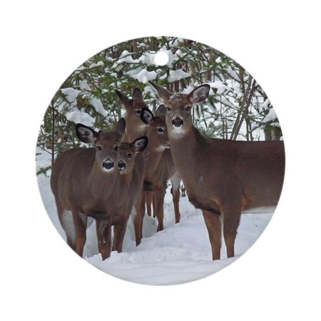 Whitetail Deer Family Ornament Round By Giftsofnature