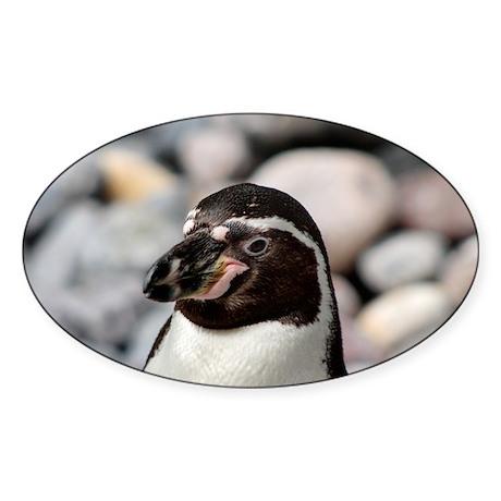 Penguin Oval Sticker