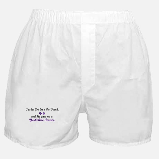 God Gave Me A Yorkshire Terrier Boxer Shorts