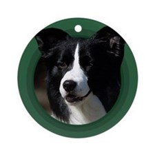 Border Collie Green Round Ornament