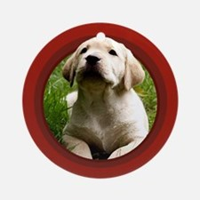 Yellow Labrador Puppy Red Round Ornament