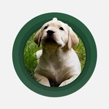 Yellow Labrador Puppy Green Round Ornament