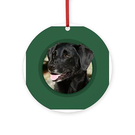 Black Labrador Green Round Ornament