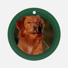 Toller Art Ornament (Round)