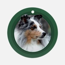 Blue Merle Sheltie Green Round Ornament