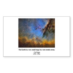 Carl Sagan D Rectangle Sticker 10 pk)