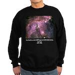 Carl Sagan O Sweatshirt (dark)