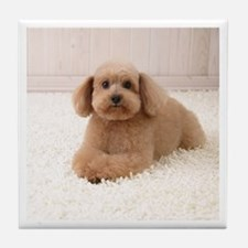 Tan Poodle Tile Coaster