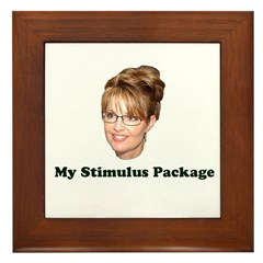 My Stimulus Package Framed Tile