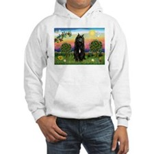 Bouvier/Bright Country Hoodie
