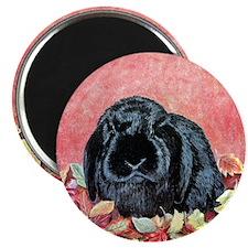 Holland Lop Rabbit Magnet