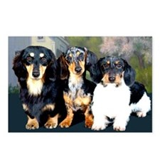 Sweet Doxie Group Postcards (Package of 8)