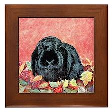 Holland Lop Rabbit Framed Tile