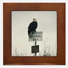 Legal Eagle Framed Tile