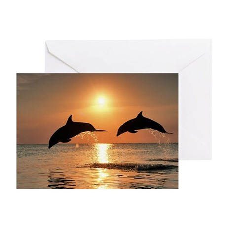 Two Dolphins Greeting Cards (Pk of 20)