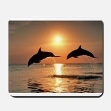Two Dolphins Mousepad