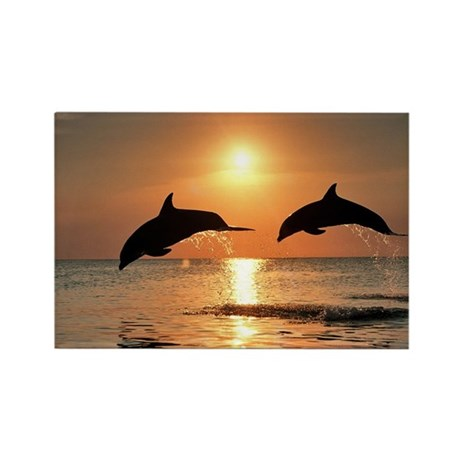 Two Dolphins Rectangle Magnet (10 pack)
