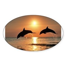 Two Dolphins Oval Decal