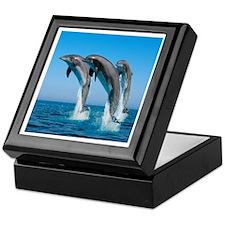 Three Dolphins Keepsake Box