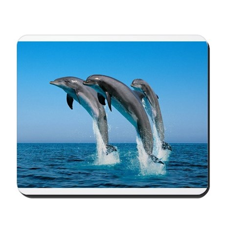 Three Dolphins Mousepad