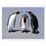 Three Penguins Small Poster