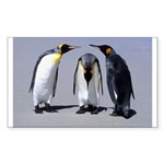 Three Penguins Rectangle Sticker