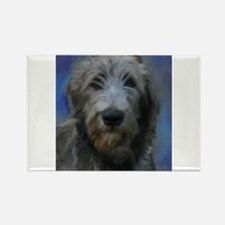 Cute Irish wolfhounds Rectangle Magnet