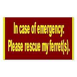 Ferret 10 Pack
