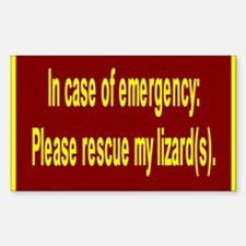 Save Lizards Rectangle Decal