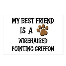 My best friend is a WIREHAIRED POINTING GRIFFON Po