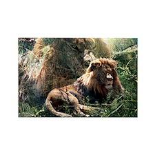 Lion Spirit Rectangle Magnet