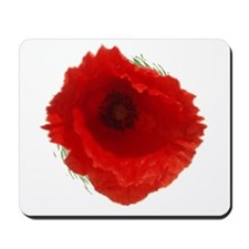 Lest we forget . . . Mousepad