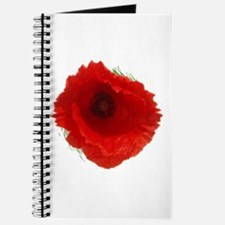 Lest we forget . . . Journal