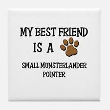 My best friend is a SMALL MUNSTERLANDER POINTER Ti