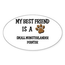My best friend is a SMALL MUNSTERLANDER POINTER St