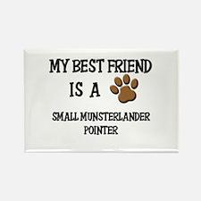 My best friend is a SMALL MUNSTERLANDER POINTER Re