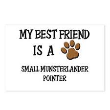 My best friend is a SMALL MUNSTERLANDER POINTER Po