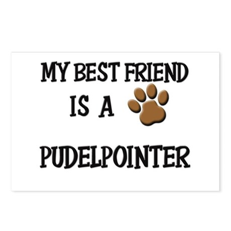 My best friend is a PUDELPOINTER Postcards (Packag